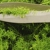 Hillbrands Landscape Management Inc