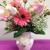 Cumberland Flowers
