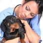 Seminole Animal Hospital - Sanford, FL
