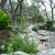 Dream Image Tree & Landscape Service LLC