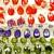 Little Indulgences Beads