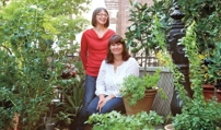 "Urban Gardening Tips From a True New York ""Horthead"""