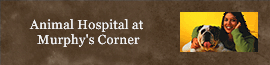 Animal Hospital at Murphy's Corner