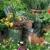 Blue Tree Garden Center