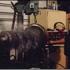 Baril Engine Rebuilding Inc