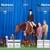 JD Performance Horses