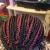 Milona Hair Braiding & Weaving