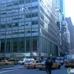 Constellation Capital Management Inc
