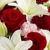 Cupid's flowers
