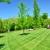 GreenPal Lawn Care of Atlanta