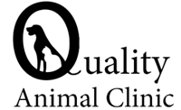 quality animal clinic
