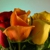 Glendale Florist And Ghses Inc.