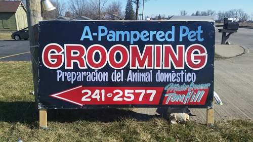A-Pampered Pet - Indianapolis, IN
