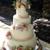 Jill's Cakes & Bakes