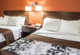 Sleep Inn Arlington Near Six Flags - Arlington, TX