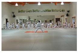 affordable kids karate lessonsstyle=