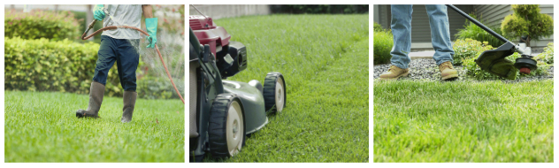 Lawn maintenance for Bergen County