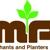 Merchants & Planters Bank