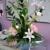 Divine Designs Floral & Tropicals