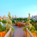 Amber Freda Home and Garden Design