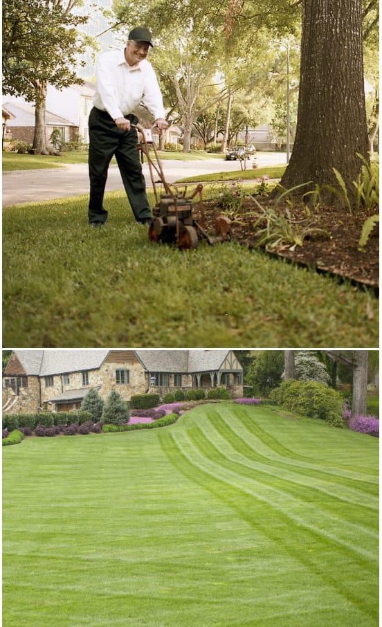landscaping designers