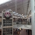 Westfield Mall - MainPlace