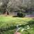 Branford River Resort & Spa