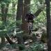Peak Performance Bicycles