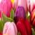 Prestige Flowers & Gifts