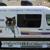 Sai Mobile Veterinary Clinic
