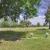 Baldwin-Fairchild - Chapel Hill Cemetery