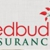 Redbud Insurance