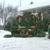 L & M Tree Farm