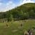 Mountain View Memory Ky
