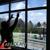 Armolan Window Films