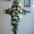 Petals A Florist