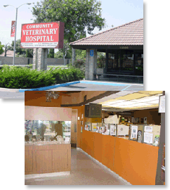 Veterinary Clinic Garden Grove