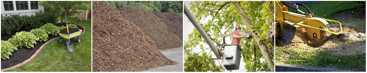 Tree and Mulch Service