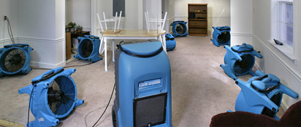 Fire, Mold, or Water Damage