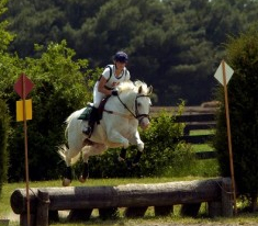horse and rider_edit