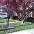 Middleton, Staten T, JD