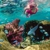 Sundiver Snorkel Tours
