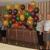BalloonCity Zephyrhills