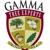 Gamma Tree Experts