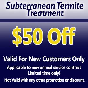 termite-coupon