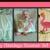 Bellies Babies & Ballerinas
