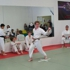 Traditional Karate Academy