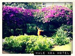 Hale Koa Hotel, Honolulu HI