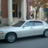 Bovilo Limousine Services