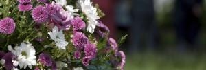 flowers_edit